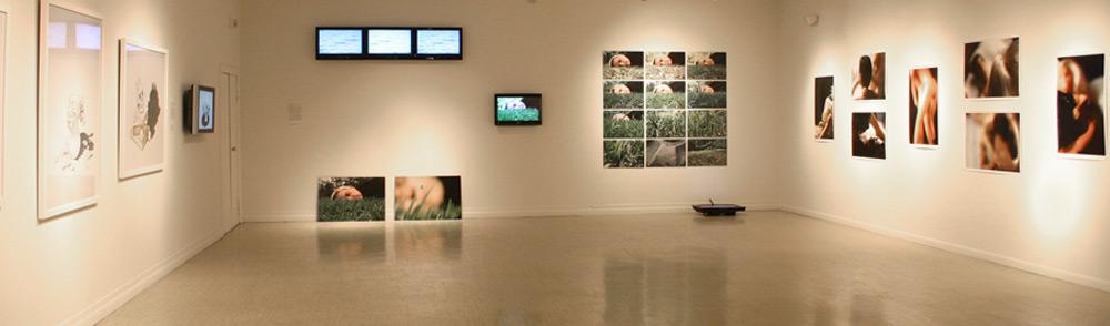 Cynthia Greig, Installation1