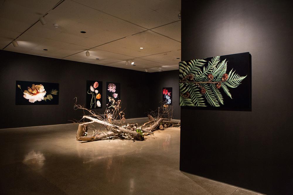 Hiberna Floris Exhibition 1